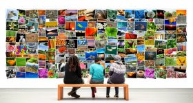 Niños contemplando arte
